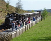 Treasures of Cardiff & Steaming through Brecons