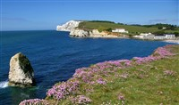 Isle of Wight - The Diamond Isle - Shanklin - DBB