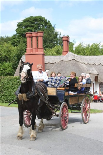 Killarney Jaunting Cars