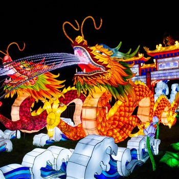 Wells Carnival & Festival of Light at Longleat