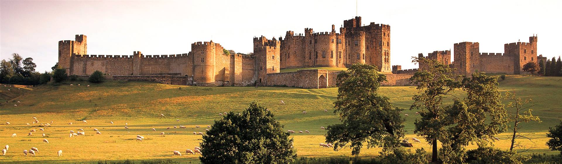 Alnwick Castle - Northumberland Tourism