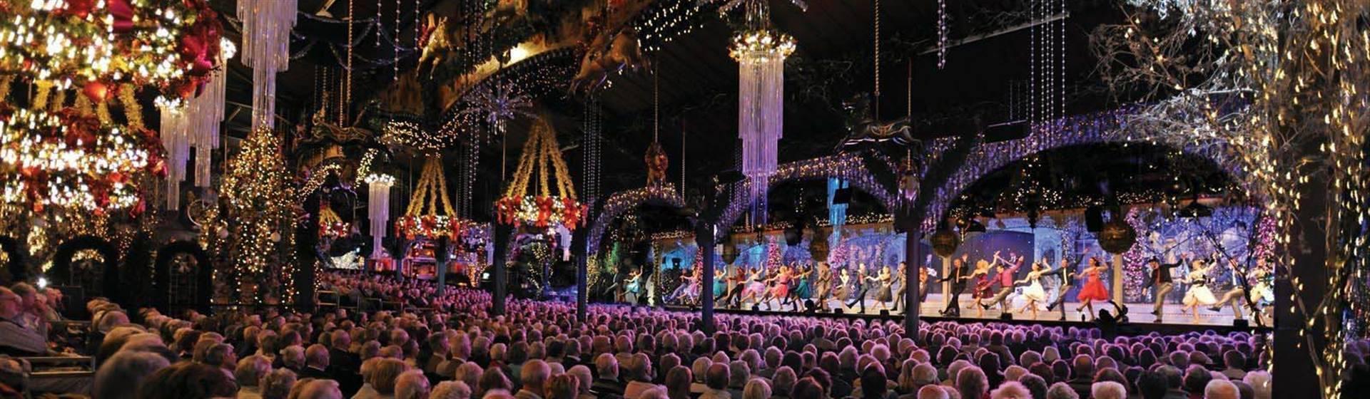 Shows & Festivals