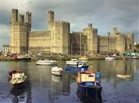 Caernarfon Winter Warmer - Turkey & Tinsel