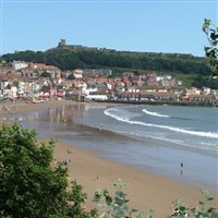 Turkey & Tinsel - Scarborough & Yorkshires Coast